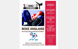 Section Boxe Anglaise